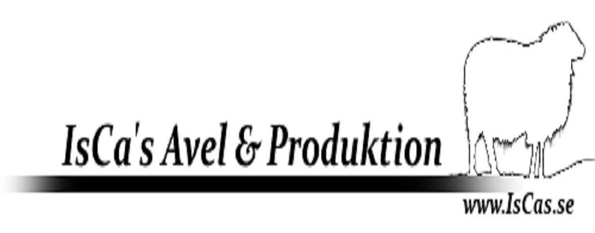 IsCa's Avel & Produktion