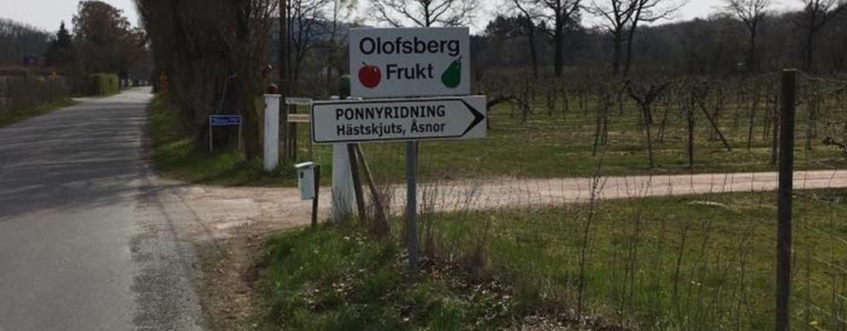Olofsbergs Fruktodling
